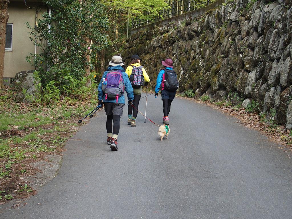 御岳山・日の出山へ犬連れマイカー登山<つるつる温泉~日の出山/御岳山~つるつる温泉>4