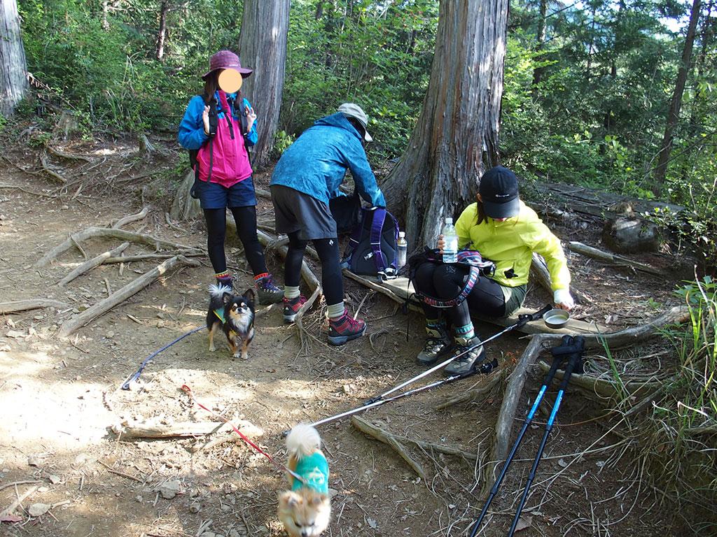 御岳山・日の出山へ犬連れマイカー登山<つるつる温泉~日の出山/御岳山~つるつる温泉>9