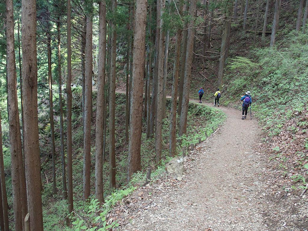 御岳山・日の出山へ犬連れマイカー登山<つるつる温泉~日の出山/御岳山~つるつる温泉>20