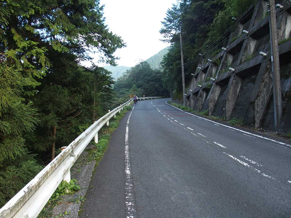 棒ノ折山(棒ノ嶺)へ犬連れマイカー登山<さわらびの湯~棒ノ折山~さわらびの湯>7