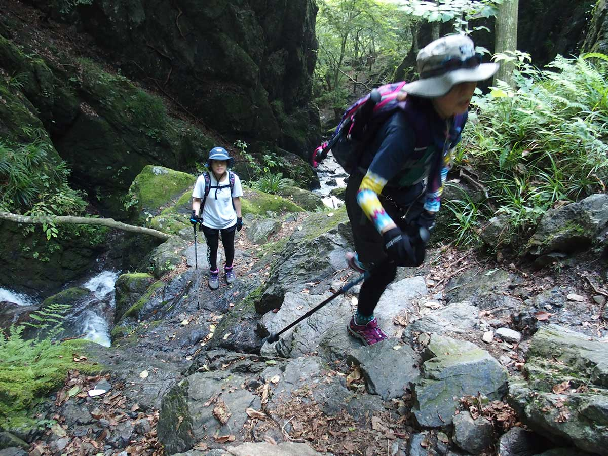 棒ノ折山(棒ノ嶺)へ犬連れマイカー登山<さわらびの湯~棒ノ折山~さわらびの湯>22
