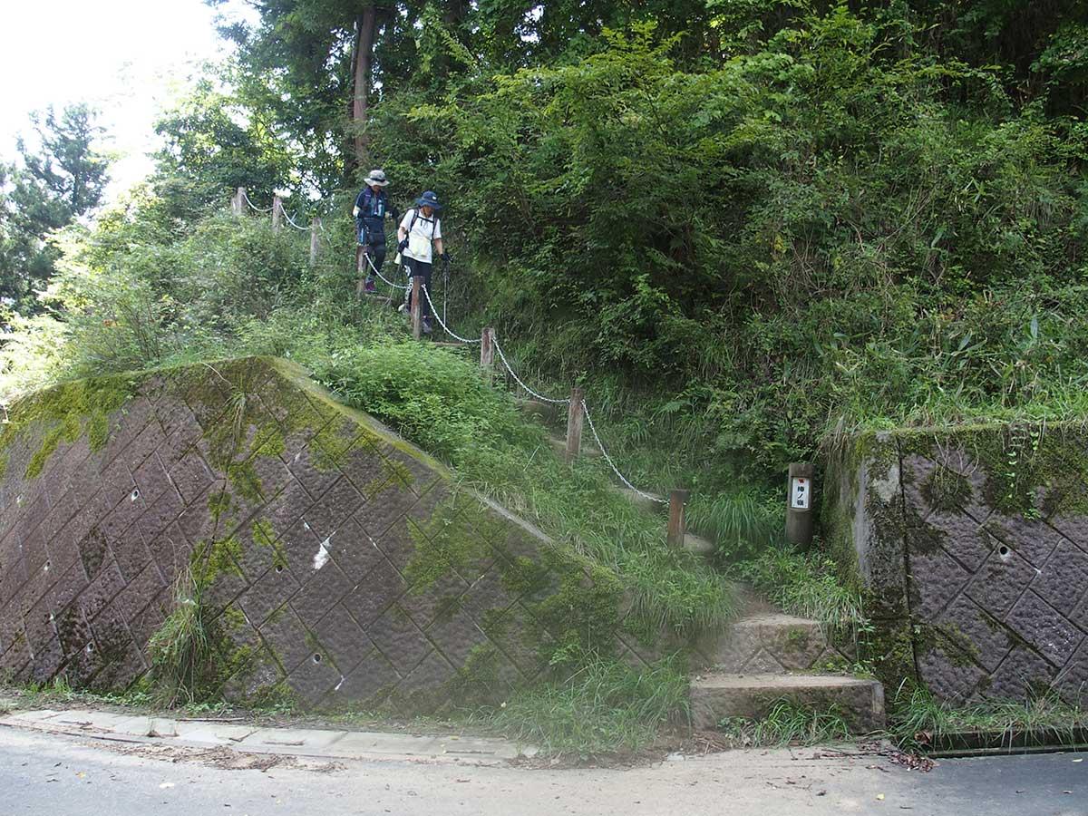 棒ノ折山(棒ノ嶺)へ犬連れマイカー登山<さわらびの湯~棒ノ折山~さわらびの湯>33