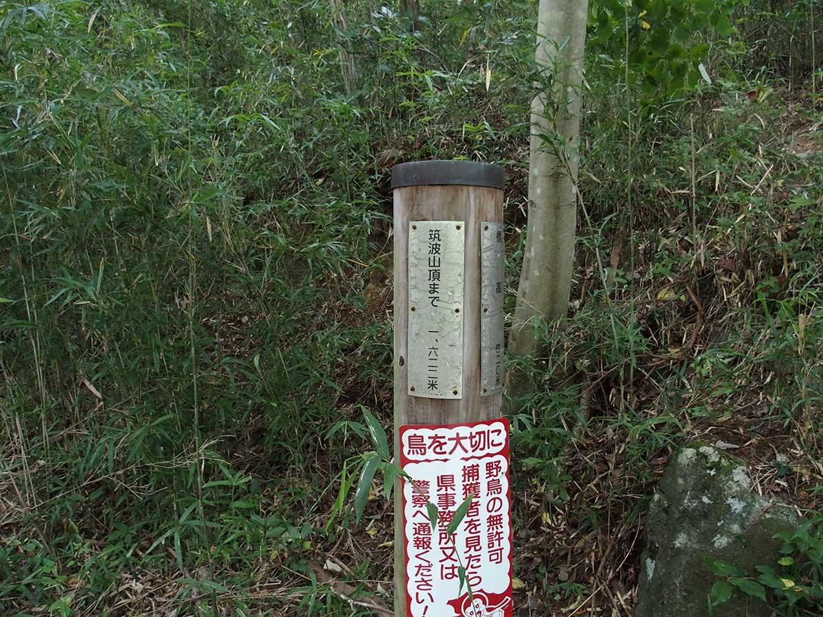 筑波山<薬王院コース>25