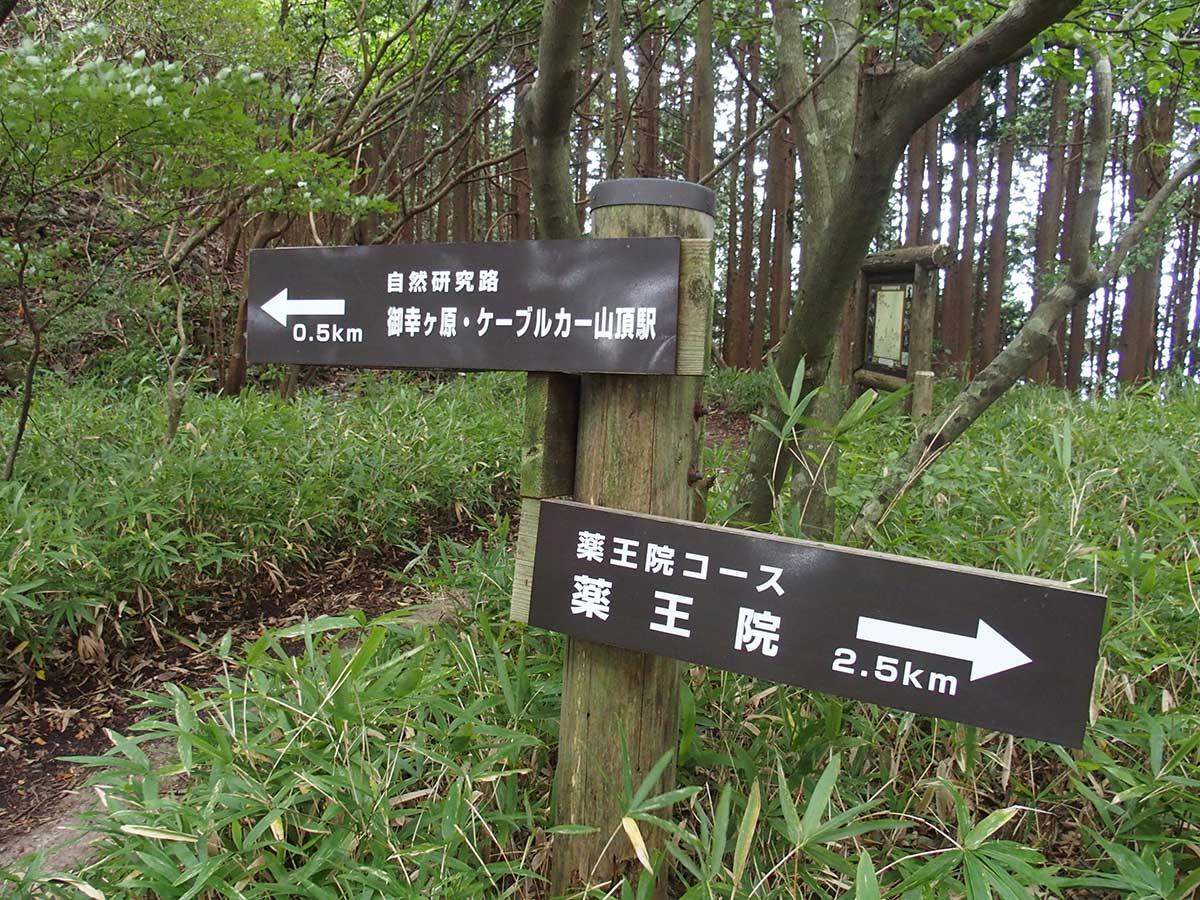 筑波山<薬王院コース>30