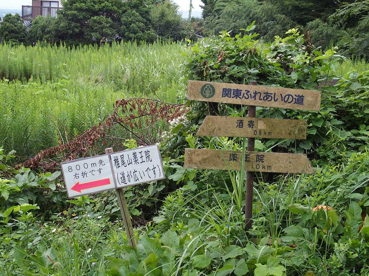 筑波山<薬王院コース>42