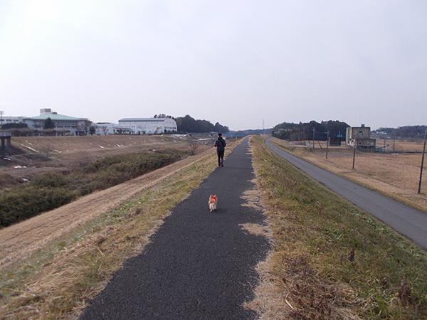 SUUNTO(スント)と犬とFASTPACK 15(ファストパック15)3