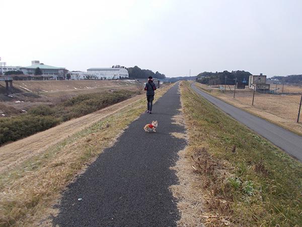 SUUNTO(スント)と犬とFASTPACK 15(ファストパック15)4