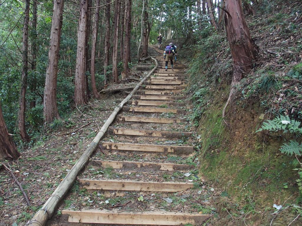 高尾山~小仏城山<ファミリートレッキング>3